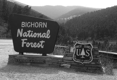 The Bighorn National Forest